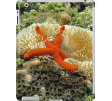 Underwater comet sea star on a sun anemone iPad Case/Skin