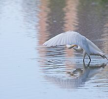 Winging It by EugeJ