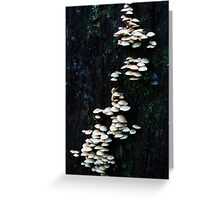 Layer Upon Layer- Fungi Greeting Card