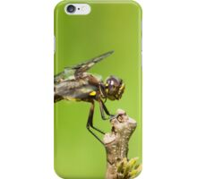 The Dragon iPhone Case/Skin