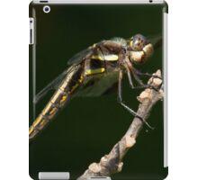 Bazinga iPad Case/Skin