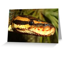 Reptile Royalty Greeting Card