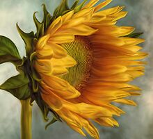 Sunflower  by Ana CB Studio