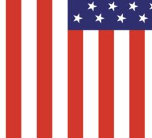 American Flag, Portrait, USA, Stars & Stripes, America, Pure & simple Sticker