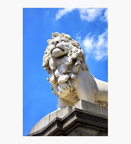 South Bank Lion Photographic Print