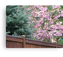 FENCE 1 Canvas Print