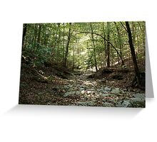 Creek bed - Clarksville, TN Greeting Card