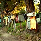 A Crowd of Letterboxes by Victoria McGuire