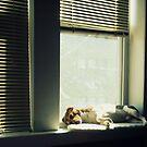 window seat by Angel Warda