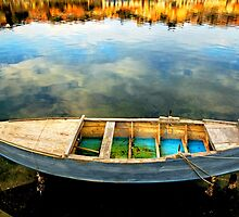 Boat on lake by Silvia Ganora
