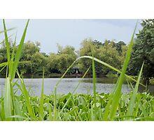 Ninoy Aquino Park and Wildlife Nature Center Lagoon's Cottage Photographic Print