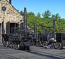 Steam Locomotives at Beamish by Tom Gomez
