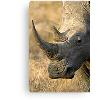 Female Rhino Getting Her Point Across Canvas Print