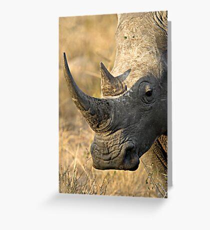 Female Rhino Getting Her Point Across Greeting Card