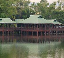 Ninoy Aquino Park and Wildlife Nature Center Lagoon hut by walterericsy