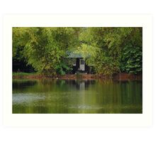 Ninoy Aquino Park and Wildlife Nature Center Lagoon Cottage Art Print