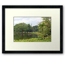 Ninoy Aquino Park and Wildlife Nature Center Lagoon  Framed Print
