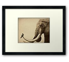 Old Friend Framed Print