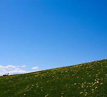 Hillside by Dylan Hamm