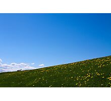 Hillside Photographic Print