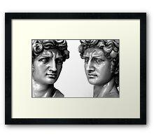Davids Framed Print