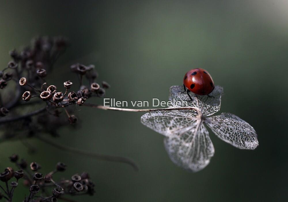 Leaving..... by Ellen van Deelen