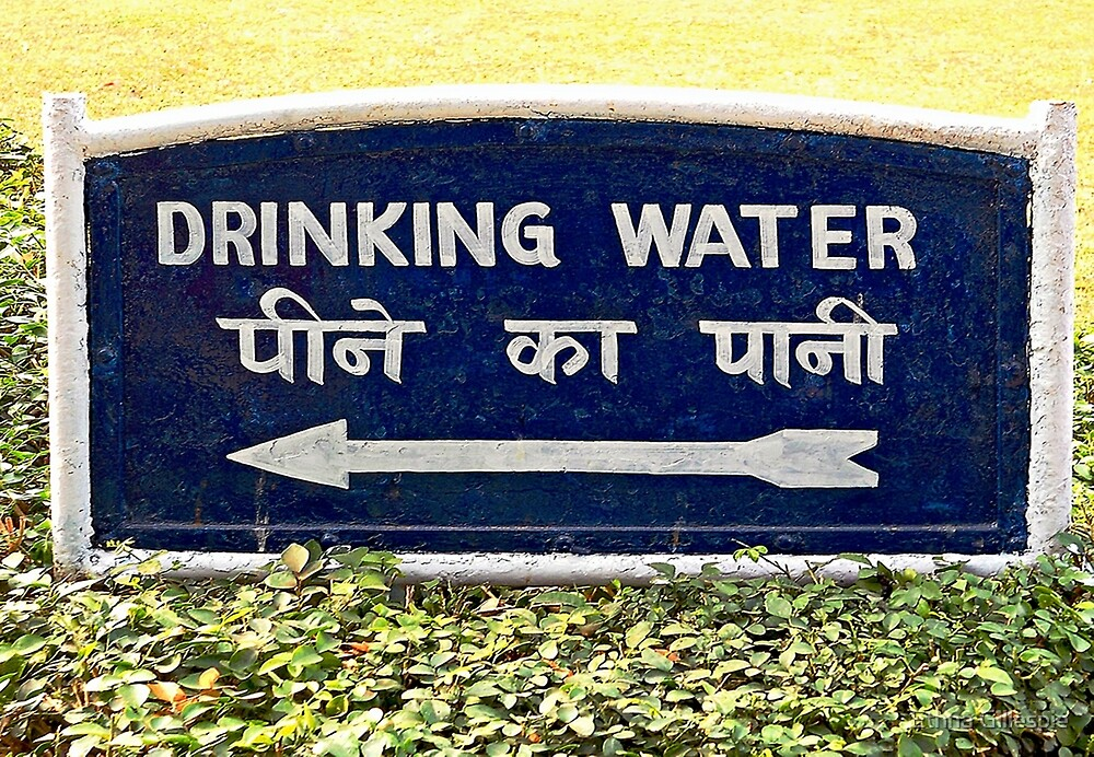 Drinking Water Sign  by Ethna Gillespie