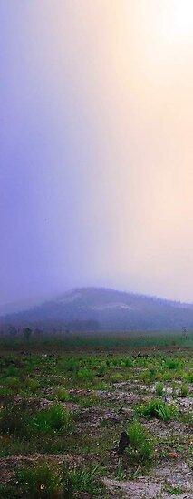 Misty Mount Cooke  by EOS20