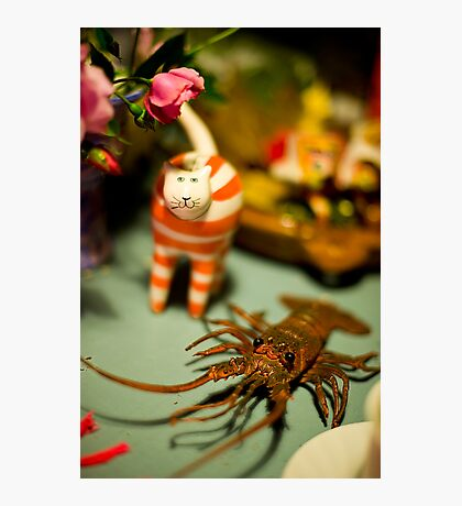 The Cat And The Lobster Were Not To Be Messed With Photographic Print