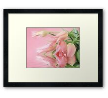 Tulips Wish  Framed Print