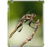 Pro Me The Us iPad Case/Skin
