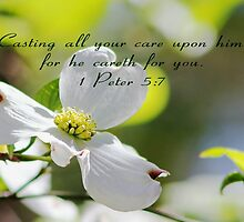 He Careth for You by Darlene Lankford Honeycutt