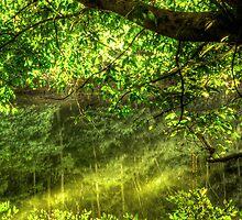 Beneath The Mire  by Matthew Jones