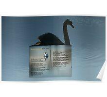 Black Swan:Tsunami Debate Poster
