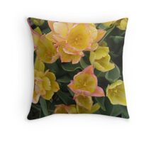 For Your Mother - Because she had You! Throw Pillow