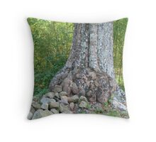 Some wounds will never heal Throw Pillow