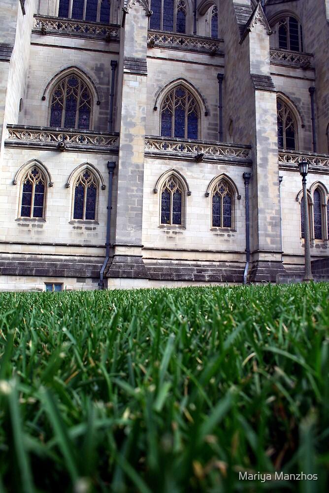 National Cathedral, Washington, DC #3 by Mariya Manzhos