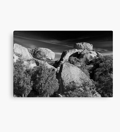 Evans Crown Canvas Print