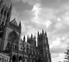 National Cathedral, Washington, DC #9 by Mariya Manzhos
