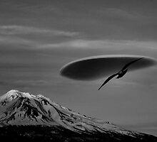 Mount Shasta Ca. by pdsfotoart