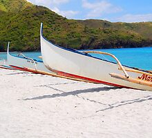 Boat parked in the shores of Zambales, Philippines by walterericsy