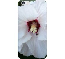 black bug on white flower iPhone Case/Skin