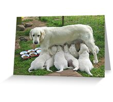 Happy mother Greeting Card