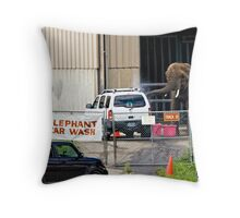 The Only Car Wash Guaranteed Not To Get Your Car Clean Throw Pillow