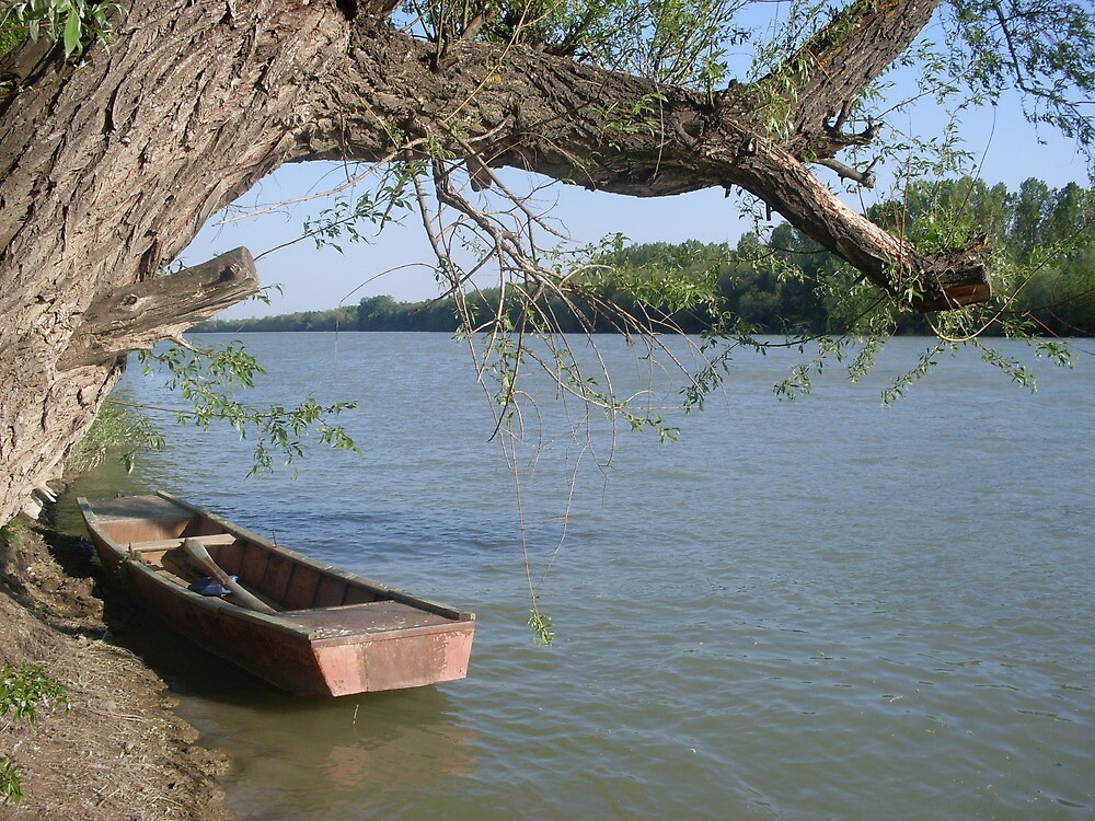 Statea o barca pe Siret by Tiberiu