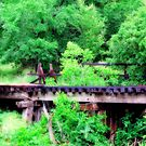 The Trestle by Sandra Moore