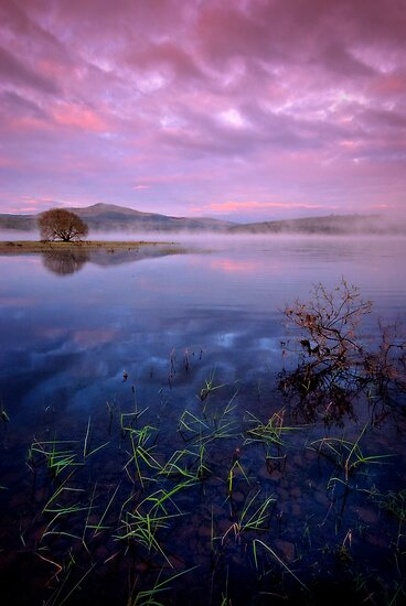 Across Carron Valley Reservoir toward Meikle Bin... by David Mould