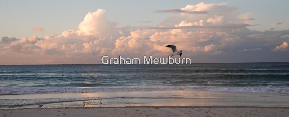 Six seagulls enjoy Kirra beach by Graham Mewburn