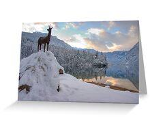 Alpine moods Greeting Card