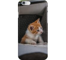 Kitty Cat On Box iPhone Case/Skin